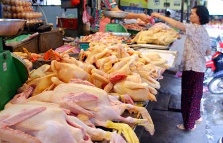 Lựa chọn thịt gà, vịt thế nào để tránh nhiễm cúm H7N9